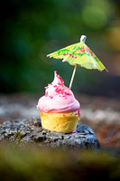 The Sassy Cupcake - Summer Cupcakes